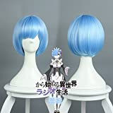 Re:ZERO Starting Life in Another World Rem Cosplay Wig Hair