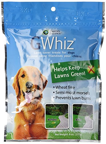 Earth's Balance G-Whiz Lawn Saver Chews For Dogs, 8 Ounce (Lawn Saver)