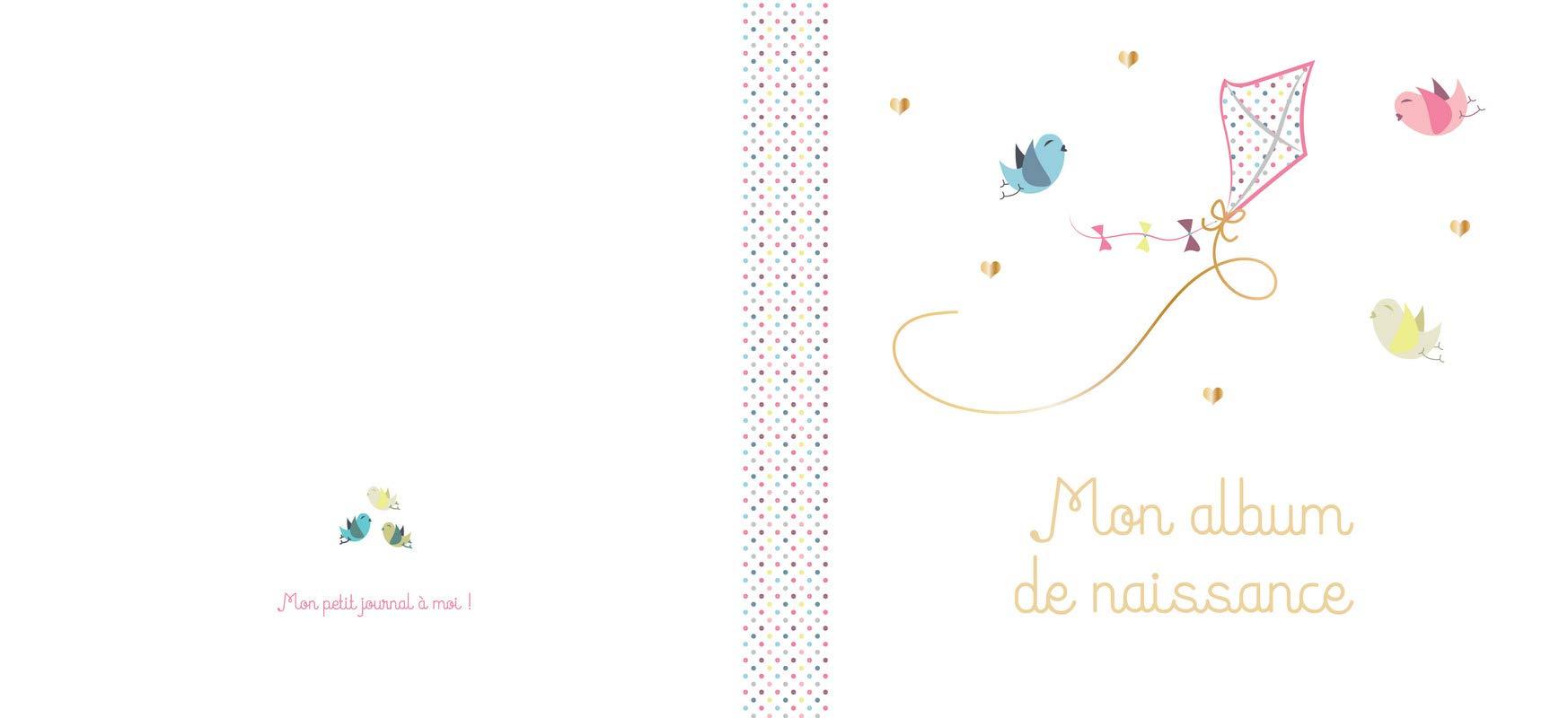Mon Album De Naissance Fille 9782360913305 Amazon Com Books