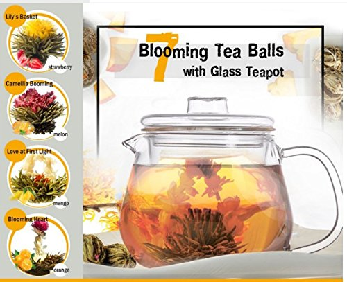 Best Gift for Women Organic Flowering Tea Gift Set: Glass Teapot with Infuser and Cups & 7 Blooming Flower Tea Balls with Natural Vanilla Flavor (Glass Teapot + 7 Blooming Tea)