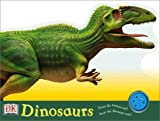 Dinosaur's Day, Ruth Thomson, 0789478897