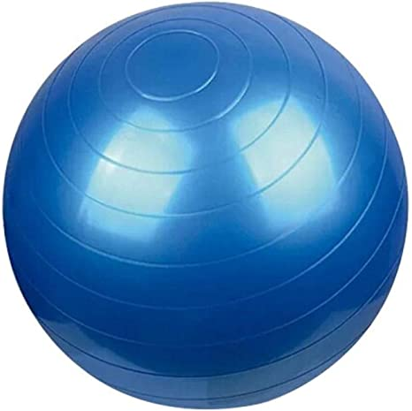 55CM Pelota Suiza o Gym Ball. Bola para Pilates, Yoga, Fitness ...