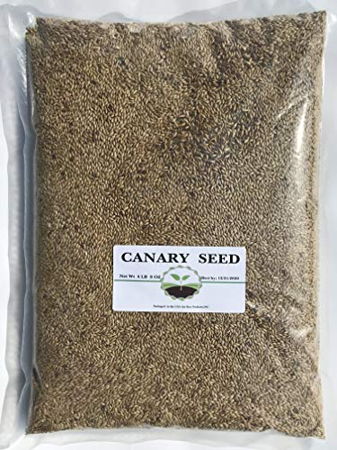 (Canary Seed 4.5 LB )