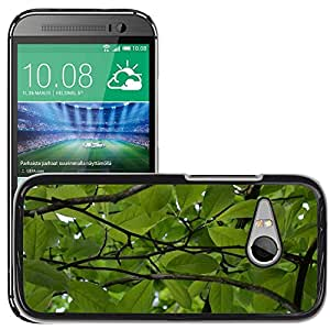 Hot Style Cell Phone PC Hard Case Cover // M00307797 Green Plants Nature Leaves // HTC One Mini 2 / M8 MINI / (Not Fits M8)