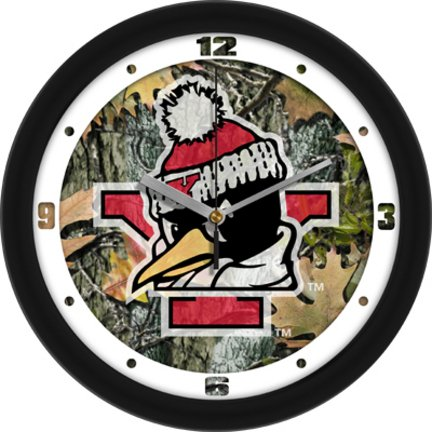SunTime Youngstown State Penguins 12