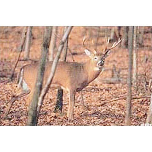 Tru-Life Paper Targets - Deer Sneak