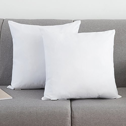 Thread Spread 95% Off- Set of 2, Down and Feather Throw Pillow Insert, Decorative Throw Pillows Inserts, Cotton Fabric (18 x 18)