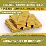 Attract Money in Abundance