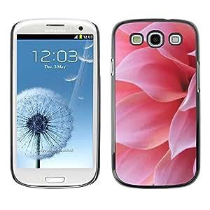 X-ray Impreso colorido protector duro espalda Funda piel de Shell para SAMSUNG Galaxy S3 III / i9300 / i747 - Pink Flower Petal Sun Summer Nature