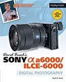 David Busch's Sony Alpha a6000/ILCE-6000 Guide to
