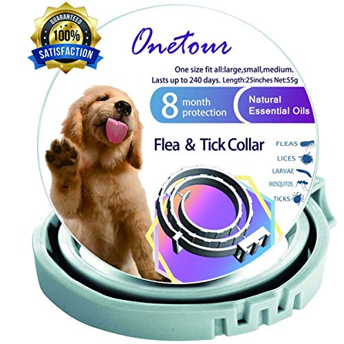 Flea and Tick Collar for Dogs - Enhanced with Natural Essential Oils - 8 Months Protection - Safe & Allergy Free - Adjustable & Waterproof - Repels Fleas Ticks Mosquitos - One Size Fits All