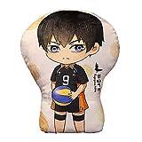 AMOLEY Pkiooi Anime Haikyuu!! Plush Pillow
