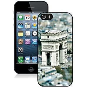 Beautiful Unique Designed Cover Case For iPhone 5S With Blue Shelf Black Phone Case