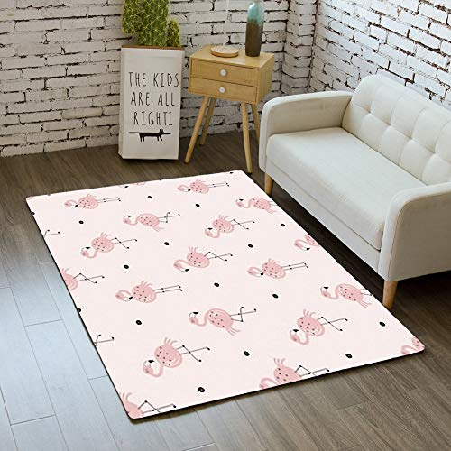 iBathRugs Door Mat Indoor Area Rugs Living Room Carpets Home Decor Rug Bedroom Floor Mats,Pink Flamingo Pattern Safari Summer