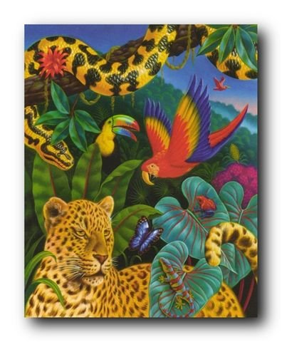 Top rainforest poster for kids