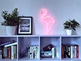 Pink Flamingo Real Glass Neon Sign For Bedroom Garage Bar Man Cave Room Home Decor Handmade Artwork Visual Art Dimmable Wall Lighting Includes Dimmer