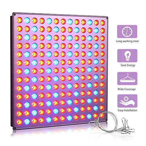 100W Watt Led Grow Light in US - 6
