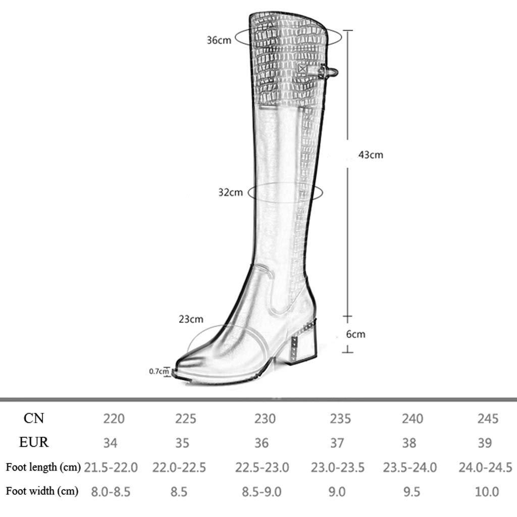 Feaona 2018 Botas Altas de Cuero en en en Punta de otoño e Invierno Gruesas con Botas para Mujer Tacón Alto Botas de Terciopelo Botas largas Botas Sobre la Rodilla de Mujer Zapatos de Mujer 8d2de4