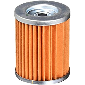 FRAM CH6066 Oil Filter for Motorcycles