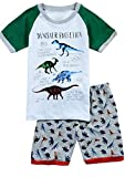 Babypajama Dinosaur Little Boys' Sleepwear Pajama Set T-Shirt & Pants Size 5 Years