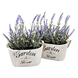 Heart To HeartButterfly Craze Purple Silk Floral Arrangements Faux Lavender Flower Plant Home Office Décor 2 Pc Set - with White Vases
