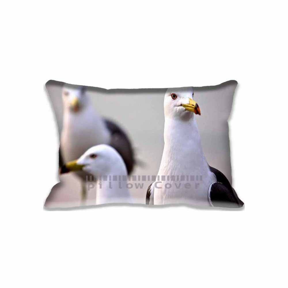 Amazon.com: Curious Seagull almohada Sham decorativo Tamaño ...