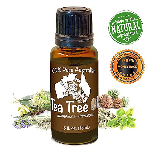 Cherry Planter (Premium Tea Tree Essential Oil, Melaleuca 15 ml - 100% Natural ★eBook!★ Uses: Skin Tags, Jock Itch, Athletes Foot, Nail Fungus, Acne, Antiseptic, Sinus, Burns, Ringworm, and much more! (15ml))