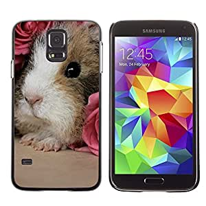 Design for Girls Plastic Cover Case FOR Samsung Galaxy S5 Hamster Guinea Pig Rodent Pink Roses Cute OBBA