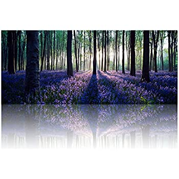 Large Size Canvas Wall Art With Frame,Lavender Forest,Mild  Sunshine,Landscape Canvas
