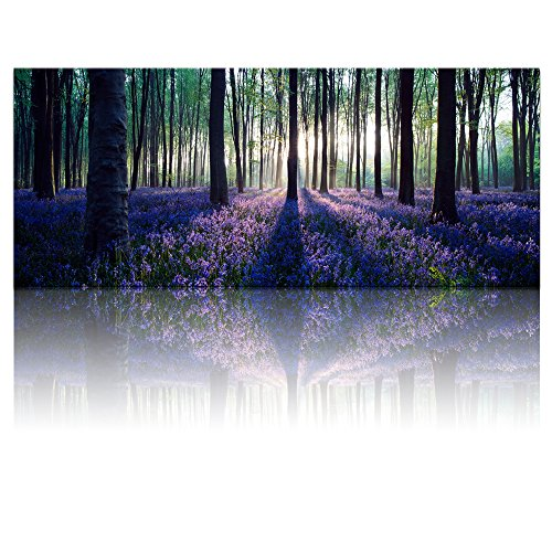 Large Size Canvas Wall Art with Frame,Lavender Forest,Mild Sunshine,Landscape Canvas Prints Art Wall Decor ,1.2 inches Thick Frame,Ready Hanging on by Visual Art