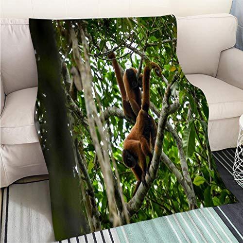 (BEICICI Home Digital Printing Thicken Blanket Red Woolly Monkeys Fashion Ultra Cozy Flannel Blanket)