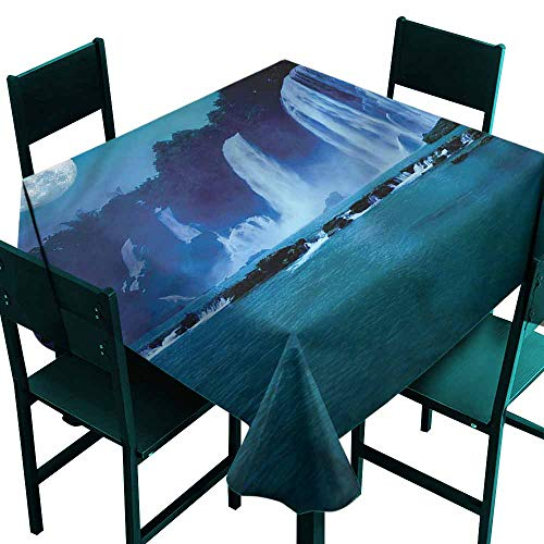 DONEECKL Oil-Proof and Leak-Proof Tablecloth Waterfall Full Moon Midnight View Soft and Smooth Surface W36 xL36