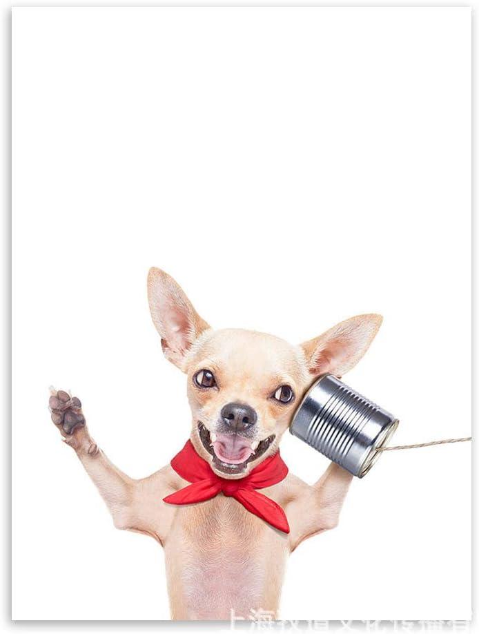 baodanla (sin Marco) Simple y Lindo Cartel de Perro de Moda Core 6 Core 16 Pulgadas 30 * 40 cm: Amazon.es: Hogar