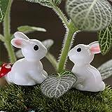 Danmu 10pcs Mini Resin Lovely Rabbits Miniature Plant Pots Bonsai Craft Micro Landscape DIY Decor Review