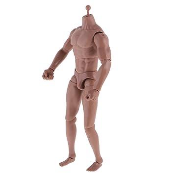1:6 Scale Narrow Shoulder Action Figure Nude Male Body Fit HOT Toys TTM18 TTM19