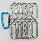 Cy3Lf Aluminum Alloy Carabiner Screw Lock Hooks, Practical Spring Snap Key Chain Clip Hook Outdoor Hiking Buckle (D-ring Shape) 10 pcs and 1 pcs blue Carabiner Keychain(GIFT)