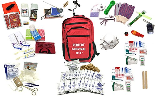 Deluxe 2-Person Perfect Survival Kit for Emergency Disaster Preparedness for Earthquake, Hurricane, Fire, Evacuations, Auto, Home and Family by P.O.M. Packs