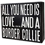Imagine This Bone Car Magnet I Love My Border Collie 2-Inch by 7-Inch Imagine This Company B0033