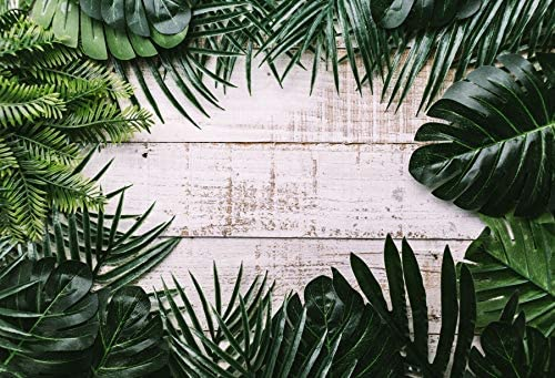 Summer Party Background 7x5ft Tropial Leaves Frame Photography Backdrop Vintage Wooden Board Plank Palm Jungle Plants Foliage Birthday Baby Shower Cosplay Decor Studio Photo Prop Poster
