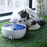 OSPet Pet Water Fountain, Flower Pet Dispenser, Super Quiet Automatic Drinking Water Bowl for Cat & Dog
