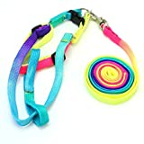 Nylon Adjustable Collar Harness Leash Lead Strap for Pet Dog Puppy Cat Kitten