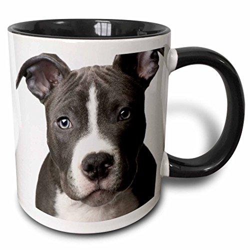 3dRose American Pit Bull Terrier Puppy Two Tone Black Mug, 11 oz, Black/White