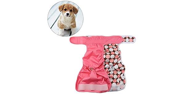 UKCOCO 2 Piezas Lavable Braguitas para Perros, Pantalones Sanitarios Fisiológicos de Pañales para Perros, Higiénicas Bragas de Mascotas, ...