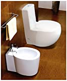 compact toilet and bidet