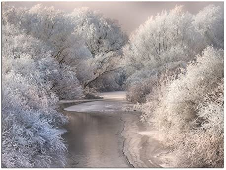 JP London Solvent Free Print PAP1X469123 Winter Song Forest Stream Frozen Wonderland Ready to Frame Poster Wall Art 24 h by 18 w