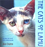 The Cats of Lamu, Jack Couffer, 1558216758