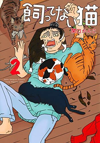 飼ってない猫(2) (KCデラックス)