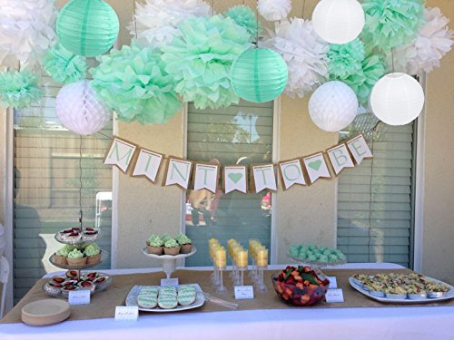 Sogorge 19 Pcs Party Decoration Kit White Mint Green Tissue Paper Pom Poms Flowers Papers Lanterns Birthday Wedding Christening Frozen Theme Party Decorations for Adults Boys -