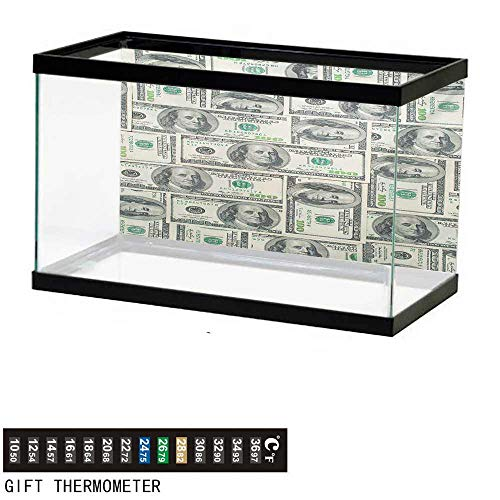 (Aquarium Background,Money,Dollar Bills of United States Federal Reserve with The Portrait of Ben Franklin,Pale Green Grey Fish Tank Backdrop 30