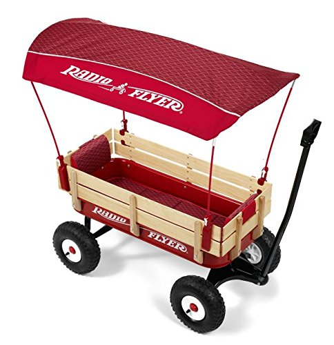 Radio Flyer Personalized Steel and Wood Wagon - Wave